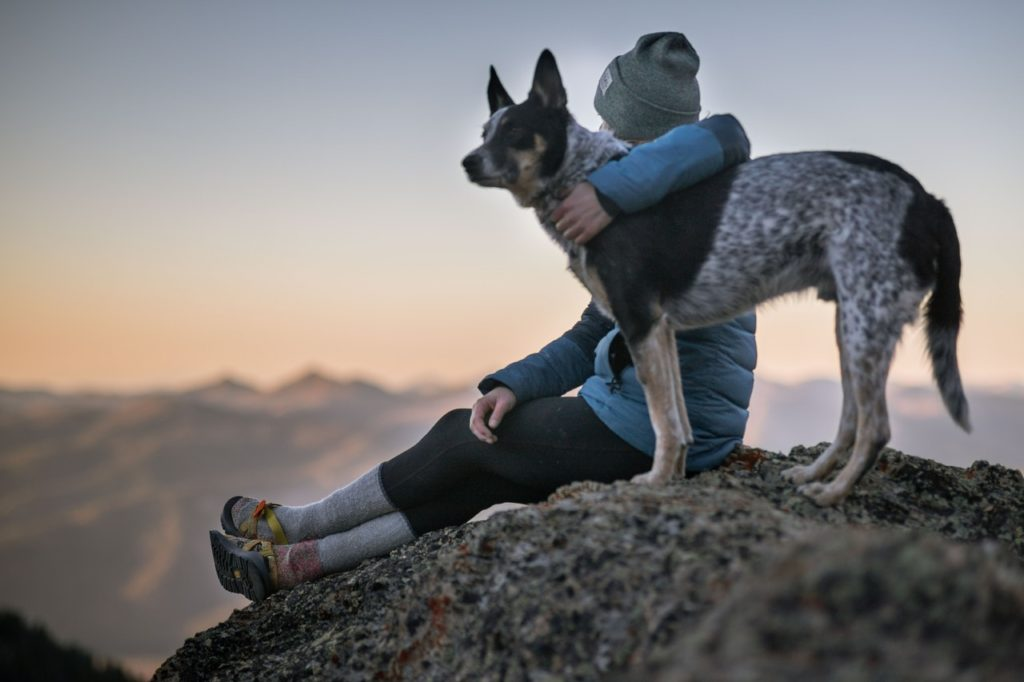 man and dog on a hill