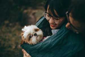 a shih tzu puppy held by a woman