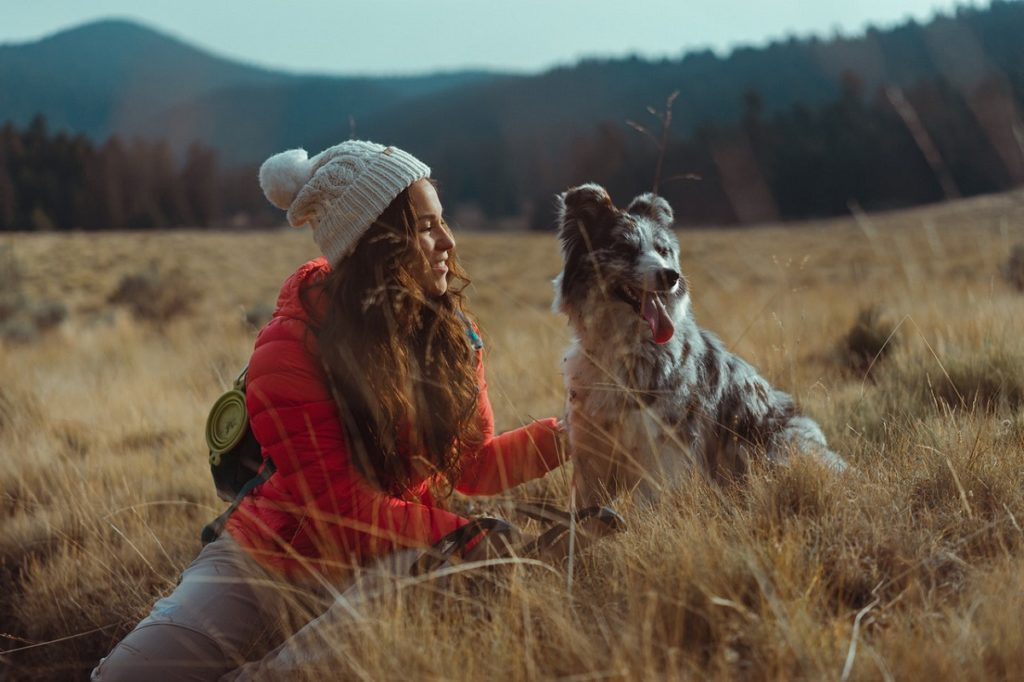 hiking with pet